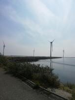 Christel Bedert Zeeuws Vlaanderen